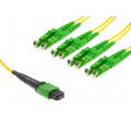 MTP to 4x E2000 A1 Breakout cable, 8 Cores, yellow